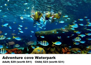 10- adventure cove