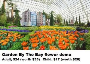 4- GBB flower dome